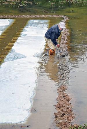 大豊 기원 農心…소중한 물 관리