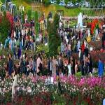 제12회 울산대공원 장미축제 개막