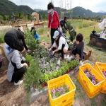 시민정원사 회원 정원만들기